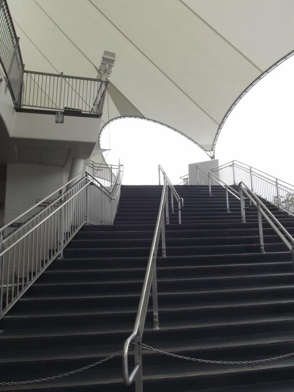 LaNouba Cirque Du Soleil stairs-Picture by Lisa McBride
