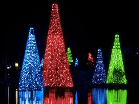 Sea World Christmas Celebration-Photo Credit SeaWorld