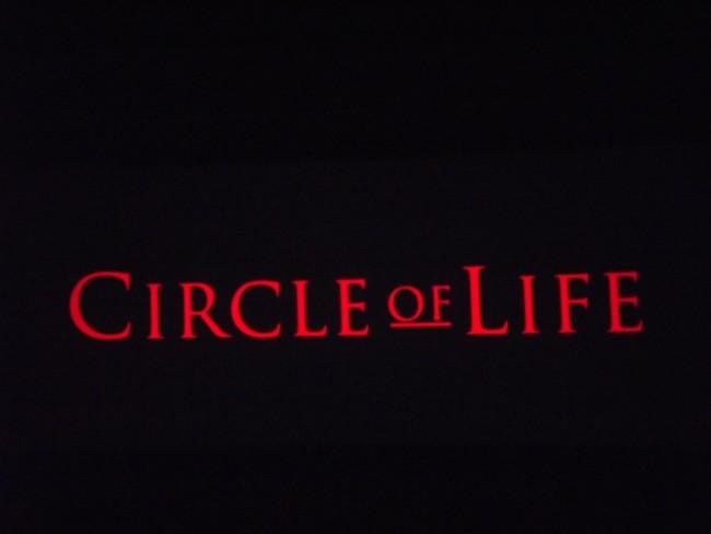 Circle of Life - The Land at Epcot - Photo Credit Lisa McBride