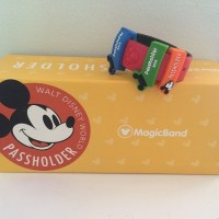 Is Being a Walt Disney World Annual Passholder Actually Worth It?
