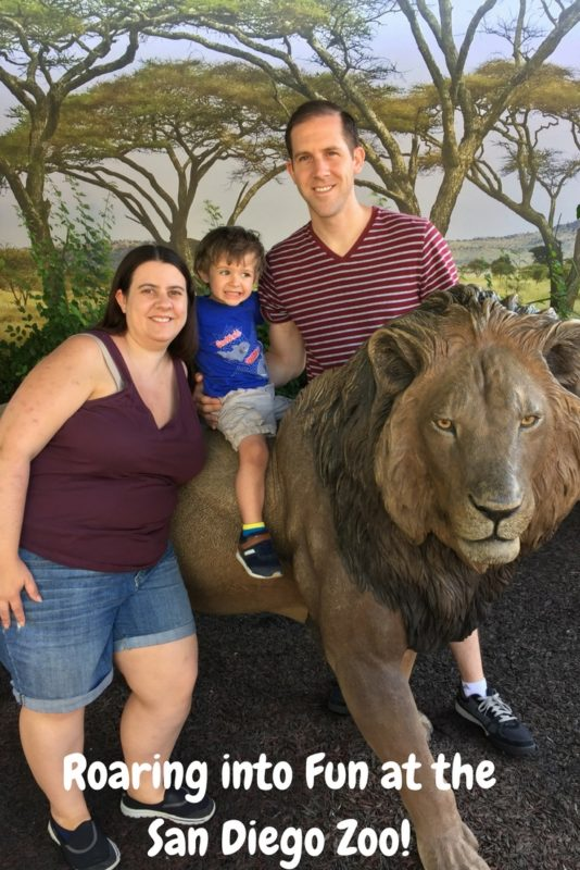 San Diego Zoo is a roaring good time.