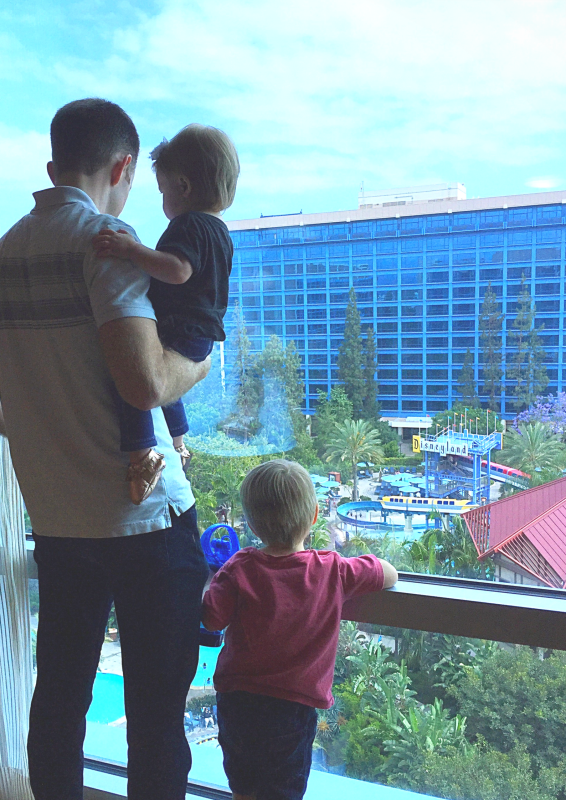 Choose a Hotel at Disneyland with a pool view