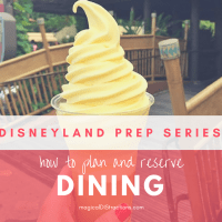 Disneyland Prep Series: Dining Tips