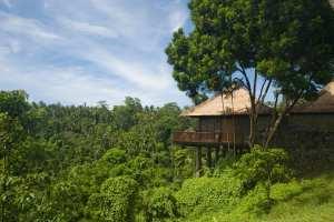 Bali Holiday in Ubud Valley Villa Resort