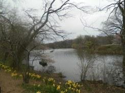Central Park_3
