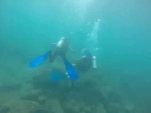 10 scuba diving tips for beginners