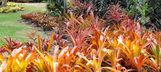 Botanical Gardens-0028