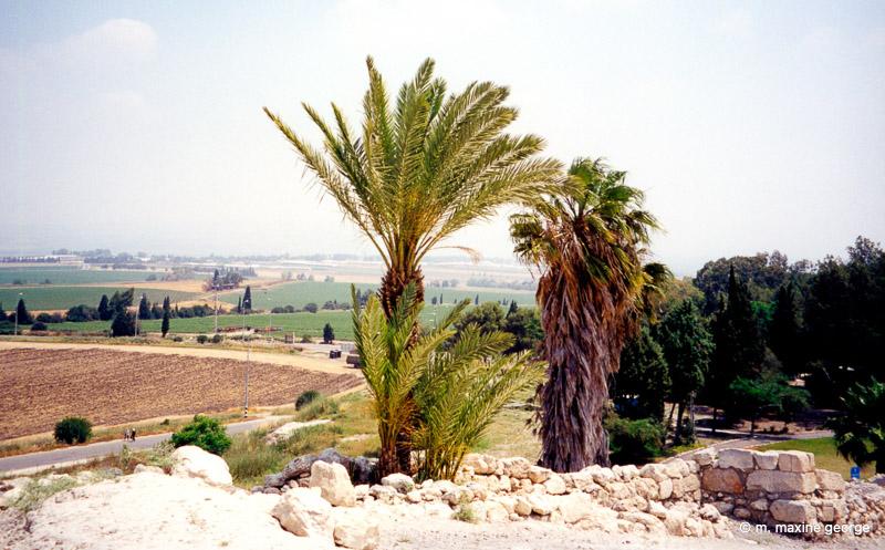 Megiddo, Overlooking the Plains of Armageddon