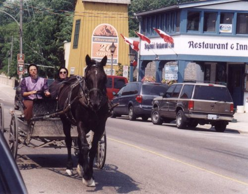 St. Jacobs Mennonite village horse and cairrage