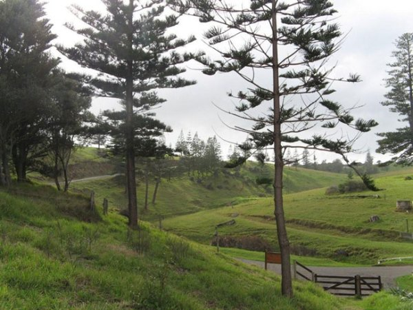 View of Headstone Road, Norfolk Island. Picture by Barry and Heather Minton