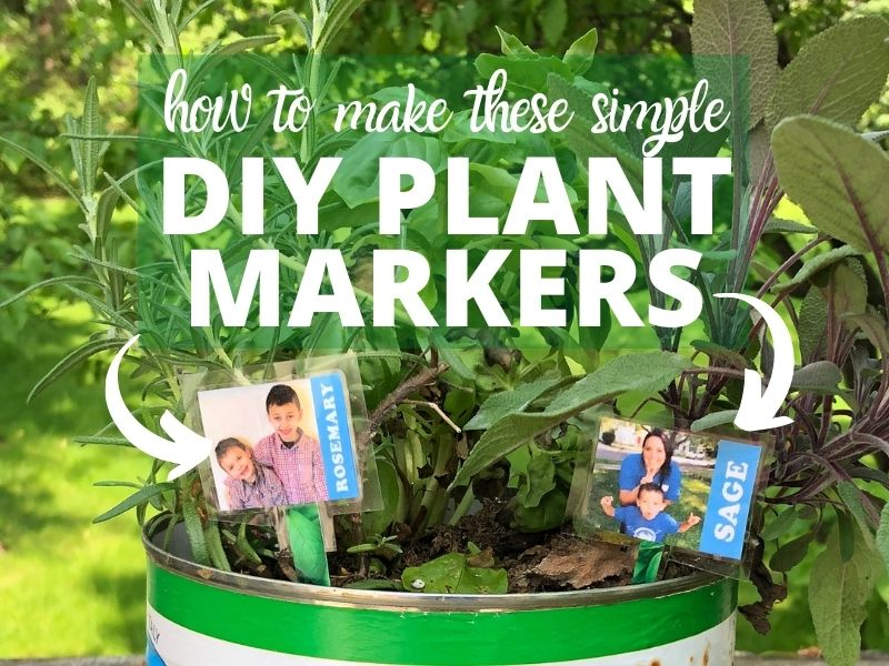 Herb garden with diy plant markers of kids and their mom