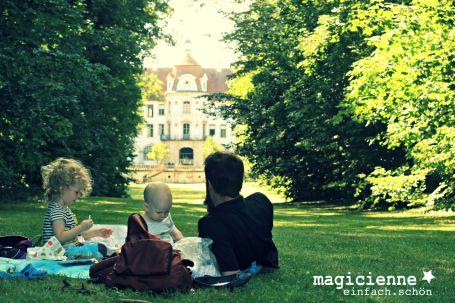 Sommerpicknick mit Familie
