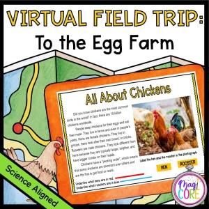 Virtual Field Trip to the Egg Farm