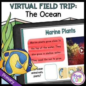 Virtual Field Trip to the Ocean for 1st Grade in Google & Seesaw Format