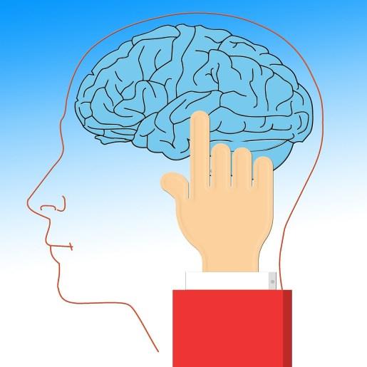 脳 ダマす