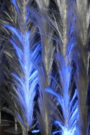 Veren-Blauw-1