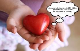 heartk