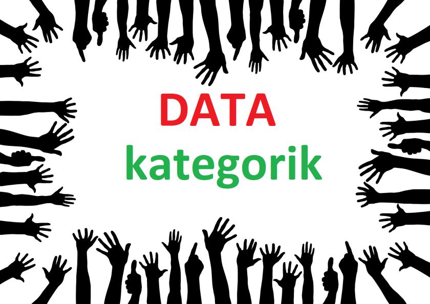 Data Kategoris