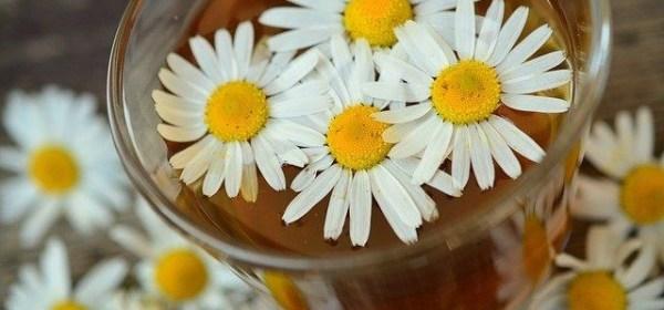 Makanan dan Minuman Yang Bisa Menghilangkan Stres