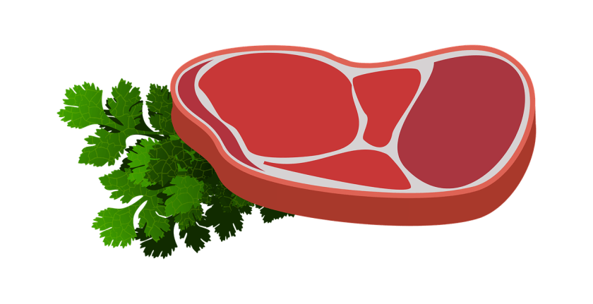 Klasifikasi Protein Dan Contohnya