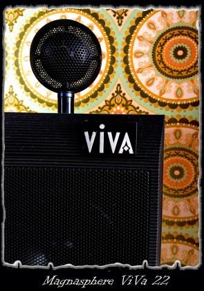 viva 22 art martijn