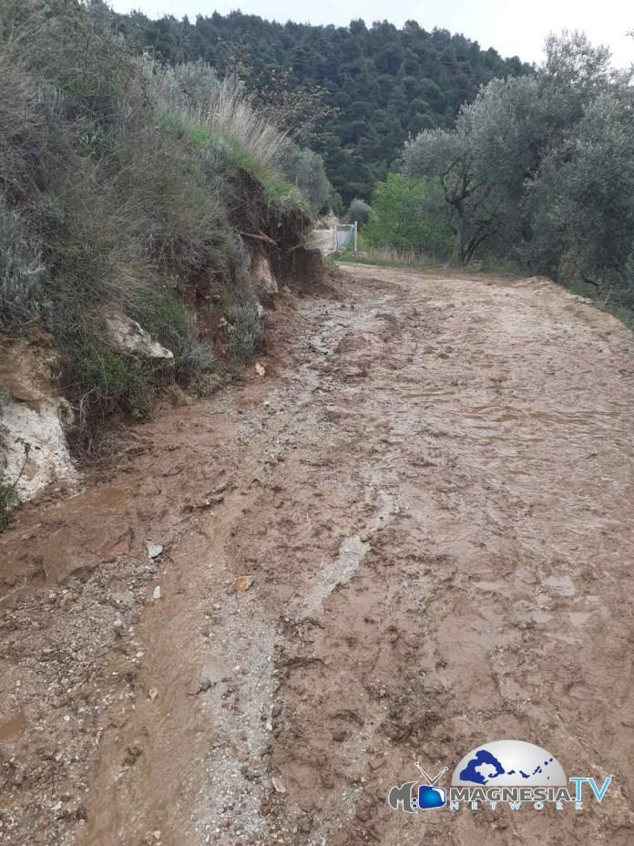 δρόμος Π Κλήμα αλώνι Τουρκογιαννη (3)
