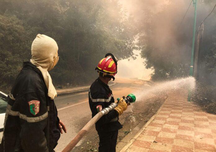 Αλγερία – Τουλάχιστον 65 νεκροί από τις φονικές πυρκαγιές