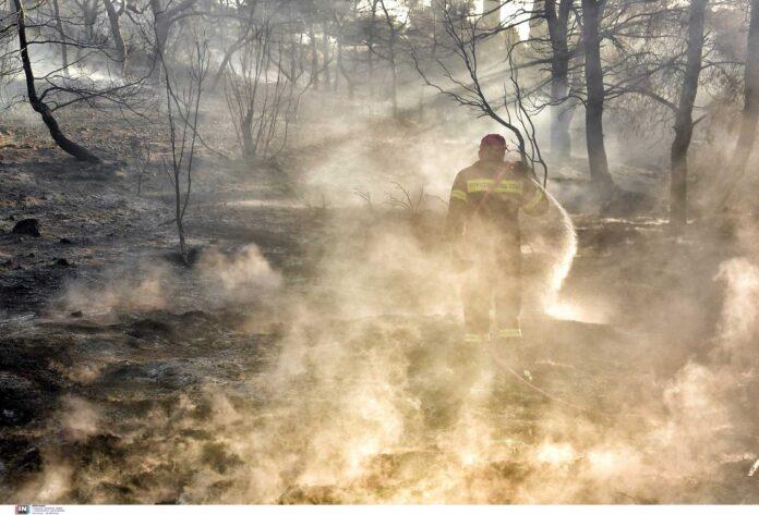 Φωτιά στην Εύβοια: «Η κατάσταση είναι τραγική»