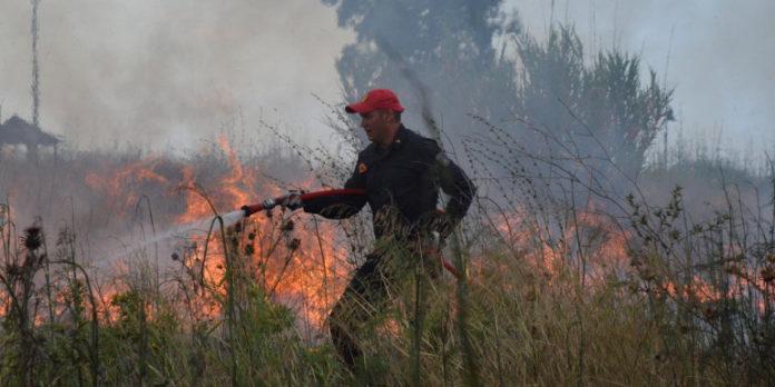 Φωτιά στο Μαρτίνο Φθιώτιδας – Μάχη για να μην επεκταθεί προς την Εθνική