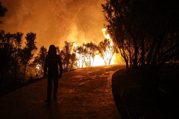 Φωτιές στην Ελλάδα: Οι σύμμαχοί μας στις μάχες της κατάσβεσης – Γιατί δεν έστειλε η Γερμανία βοήθεια;