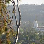 Take Me Away: Planning a Family Weekend in Santa Barbara