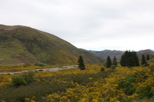 Drive to Arthurs Pass