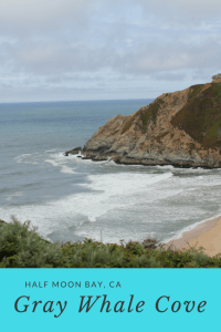 Gray Whale Cove Social Media