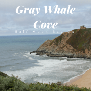 Gray Whale Cove Social Media Photo