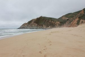 Beach Gray Whale Cove