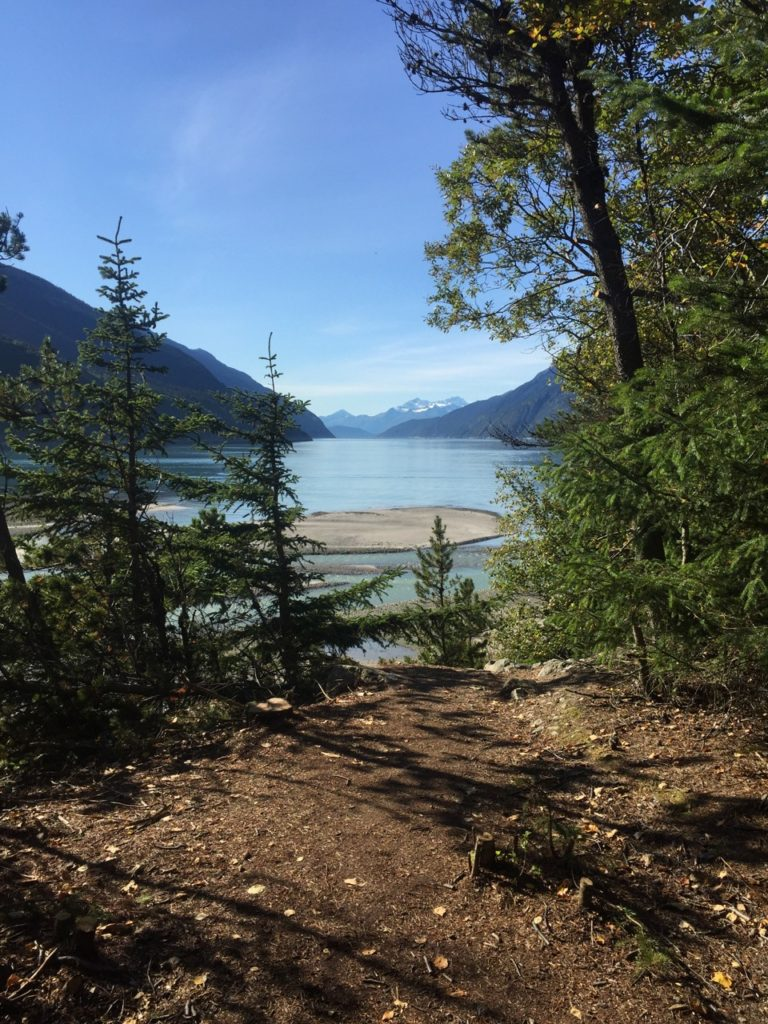 View of the Skagway River and Trees