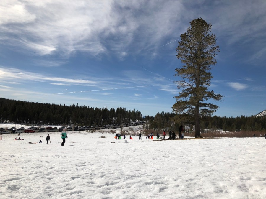 Free sledding Lake Tahoe