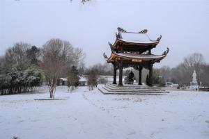 Snow Day @ Magnolia Grove