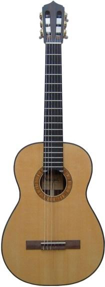 Magnus Guitars I Akustik Gitarre