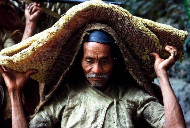 cacadores-de-mel-nepal15