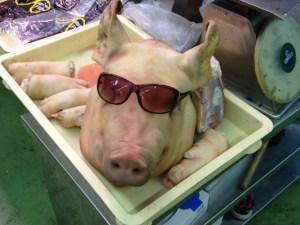 豚にサングラス