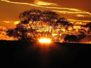 黄金の日没
