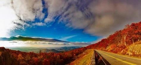 紅葉と雲海