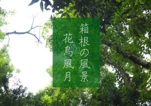 箱根の風景_花鳥風月(C)箱根・孫三総本家・花詩