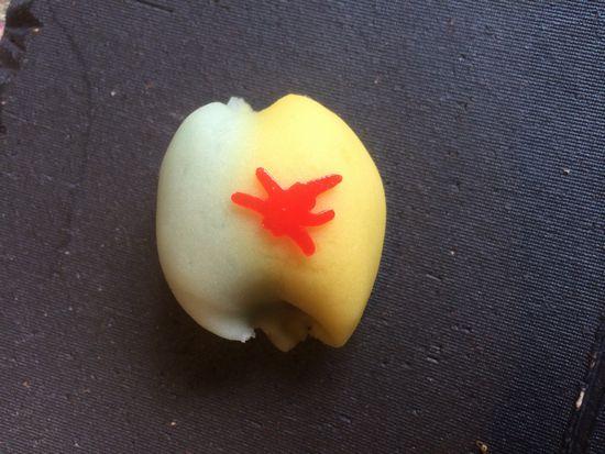 箱根のお土産・箱根の和菓子・季節の和菓子(C)箱根・はこね・孫三・花詩 Hakone Japan Japanese sweets WAGASHI