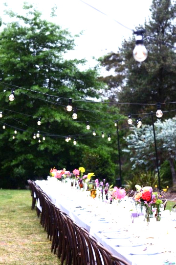 garden festoon lighting