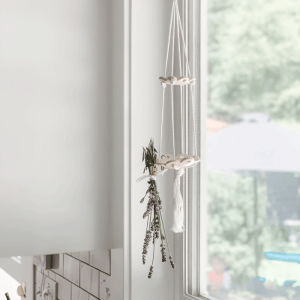 best way to dry herbs