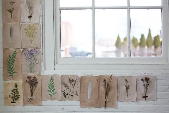 dried flower wallpaper
