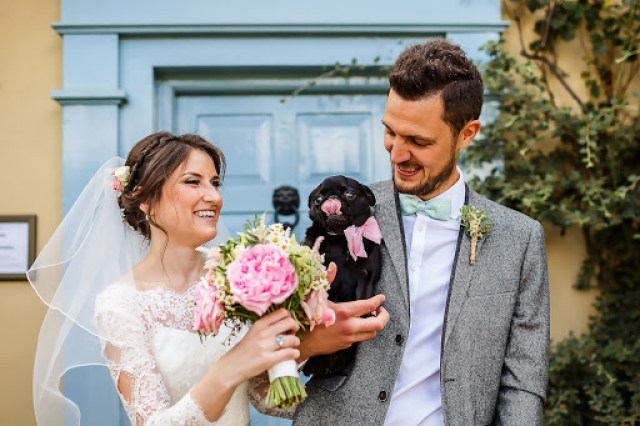 Animals at Weddings - How to Incorporate Them Into Your Wedding Day