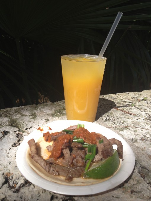 Mexican Food at Epcot's Food and Wine Festival
